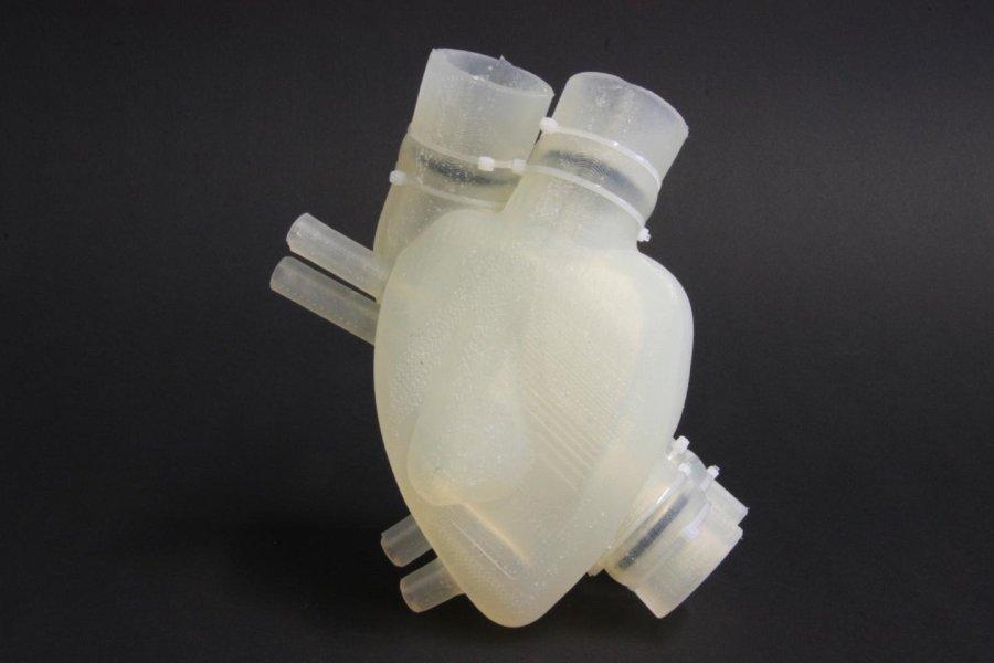 Corazón impreso en 3d.jpg