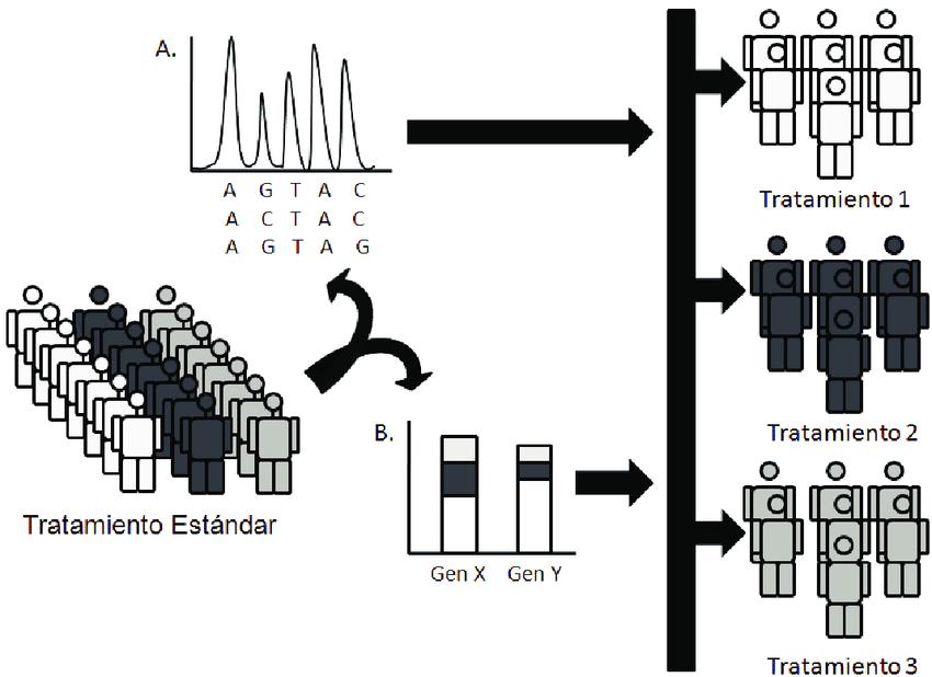 Aplicacion-de-la-farmacogenomica-en-el-tratamiento-del-CG-En-contraste-con-el-esquema-de.png
