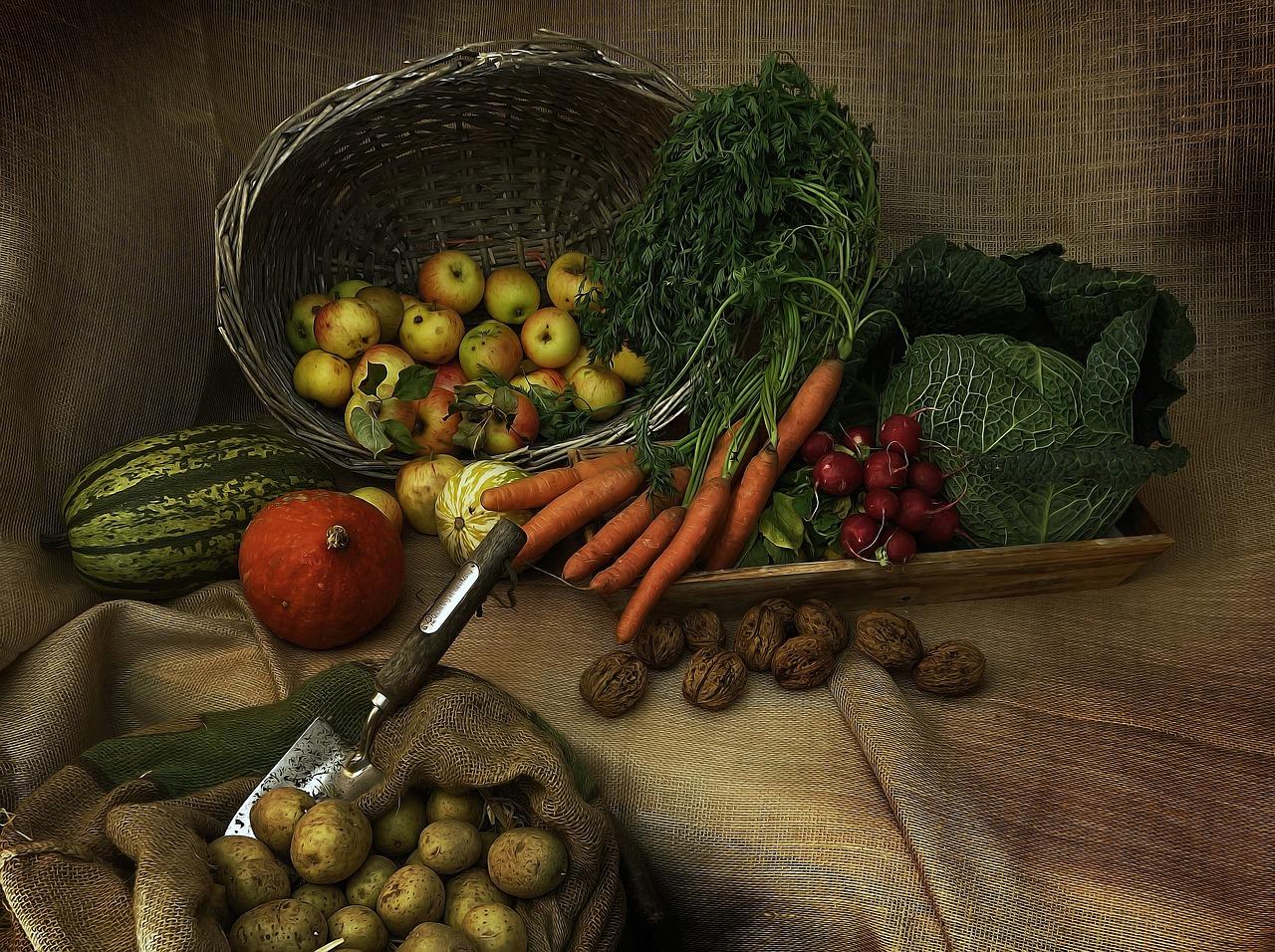 harvest-3679075_1280